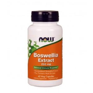 NOW Boswellia Extract 250 mg 60 veg capsules