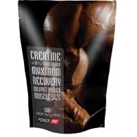 Power Pro creatine 500 грамм