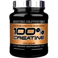Scitec Nutrition 100% creatine monohydrate 1 kg